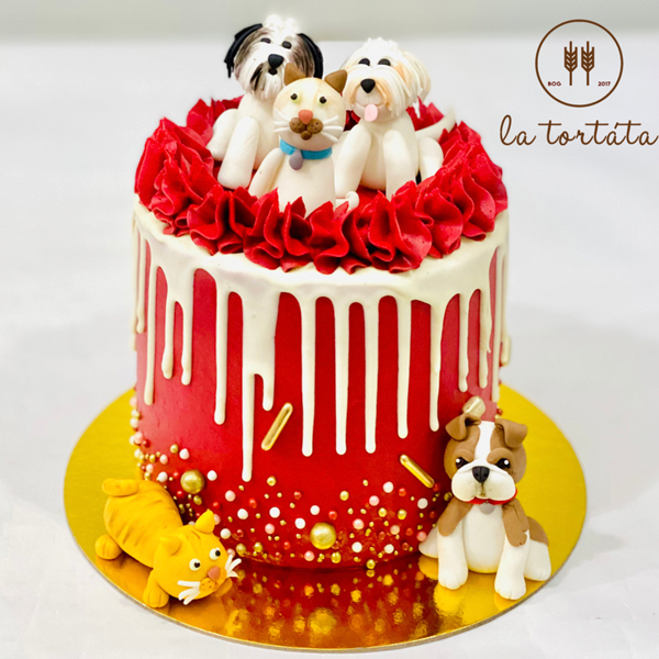 CakeDogs